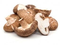 cogumelo-shitake-seco