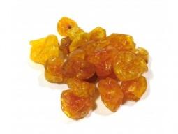 goldenberry-c-acucar-desidratado